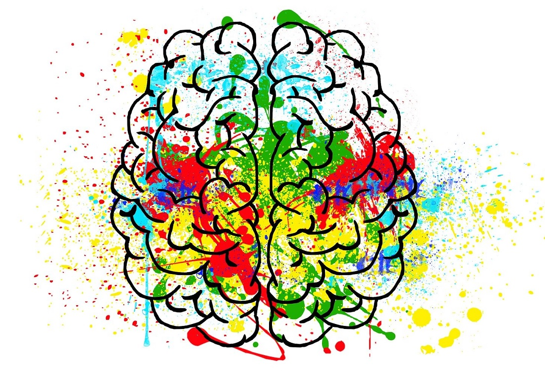 Meer oog voor de invloed van hormonen op het brein