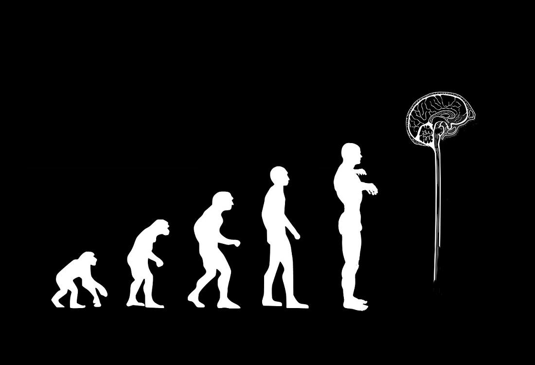 Een evolutionaire benadering van geestelijke gezondheid