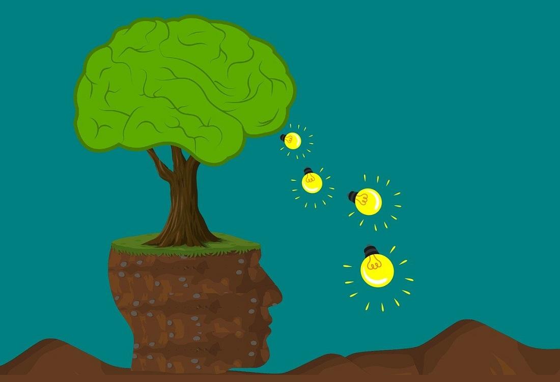 Meer aandacht voor natuur in geestelijke gezondheidszorg