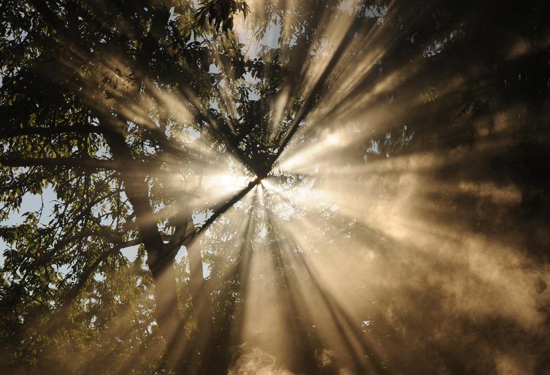 Het belang van licht voor onze fysieke en mentale gezondheid